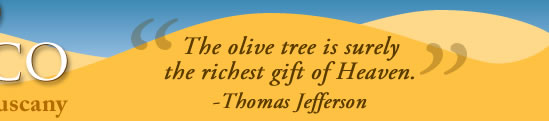 Thomas Jefferson quote: 'The olive tree is surely the richest gift of Heaven.'